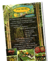 menu-button-flyer-bocas-del-toro-jungle-hike