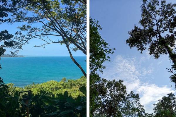 Amazing views of the Caribbean from Up in the HIll Eco Lodge in Bocas del Toro.