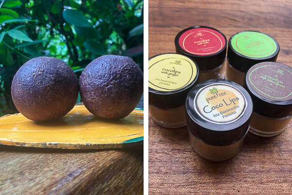 Up in the Hill Gift Shop has cacao and lip balms to buy in Bocas del Toro.