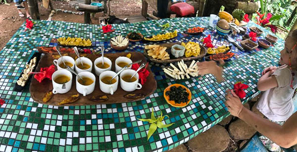 The beautiful spread of organic coffee and treats from the Bocas del Toro Chocolate Farm Tour at Up in the Hill.