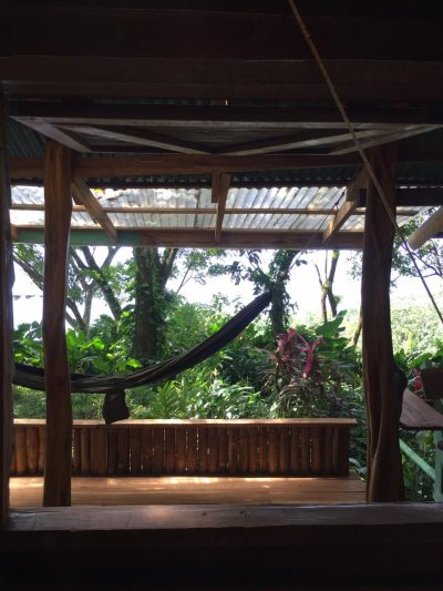 the view to the ocean of the jungle cabin in bocas del toro.