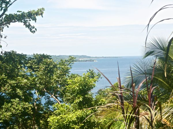 The view from the silverback cabin in Bocas del Toro at the Panama Eco Lodge.